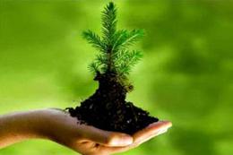 پروژه مالی حسابداری محیط زیست